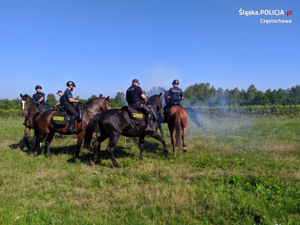 Konie na poligonie 1