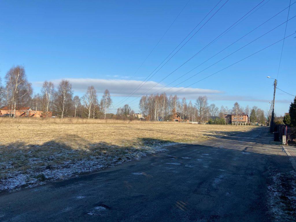 Częstochowska radna walczy o zakaz polowań w mieście 1
