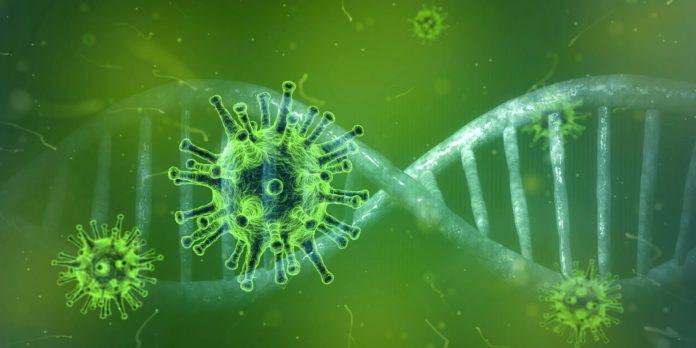 Dwie osoby z powiatów: myszkowskiego i lublinieckiego zarażone koronawirusem 2