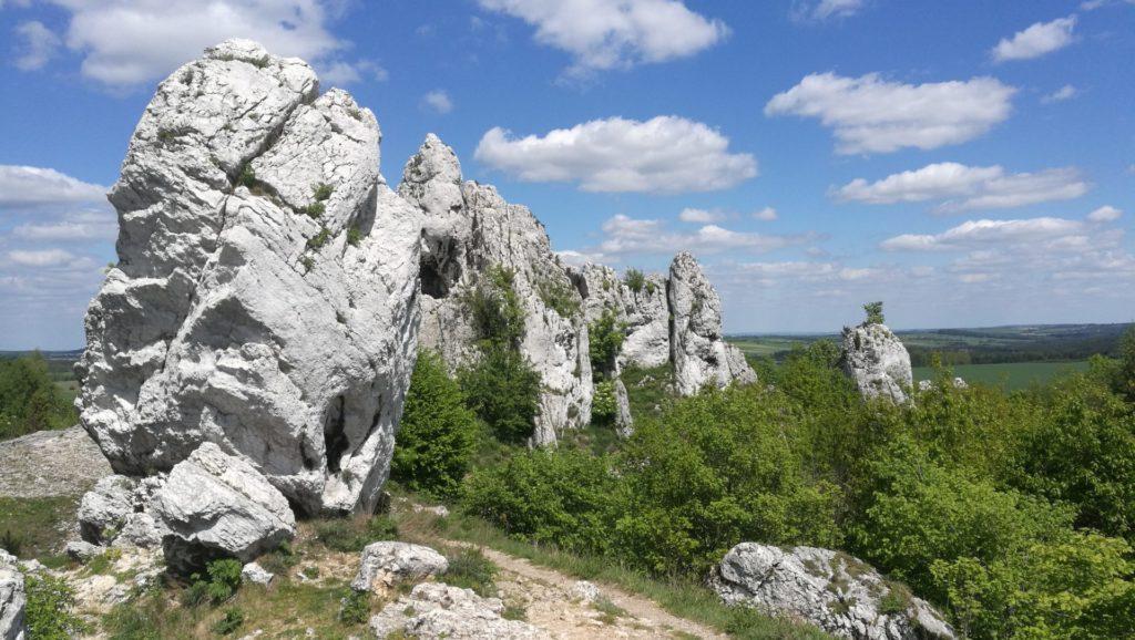 Skupisko skał wapiennych nieopodal Zamku Ogrodzieniec