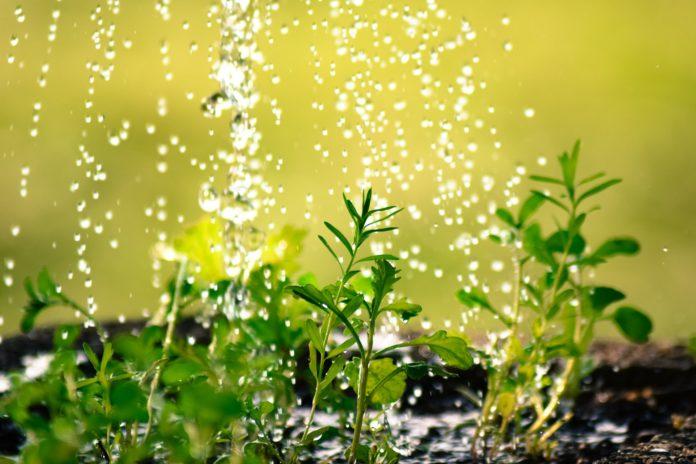 Radni apelują — oszczędzajmy wodę 3