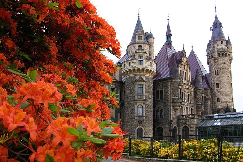 Zamek Moszna. 365 pomieszczeń, 99 wież i imponujący park kwitnący azaliami 18