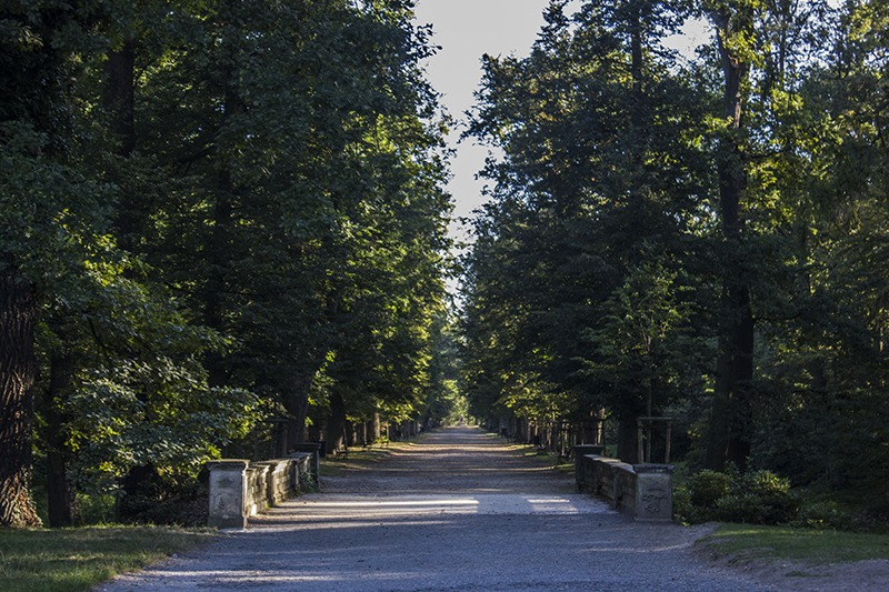 Zamek Moszna. 365 pomieszczeń, 99 wież i imponujący park kwitnący azaliami 19