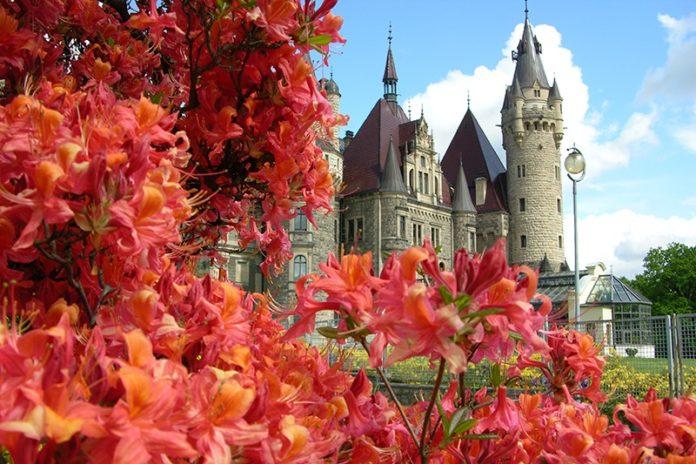 Zamek Moszna. 365 pomieszczeń, 99 wież i imponujący park kwitnący azaliami 40