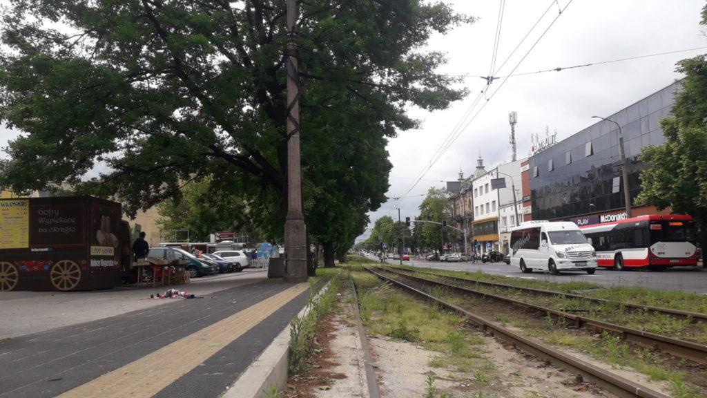 MPK zapewnia, że drzewa przy torowisku w Śródmieściu pozostaną 2