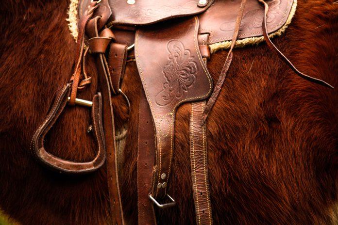saddle-792822_1920