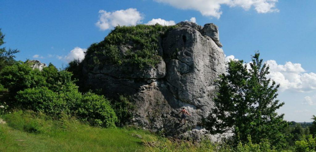 Szlak Orlich Gniazd. Miejsca nie tylko do wspinaczki: Okiennik Wielki  i Skały Rzędkowickie 1