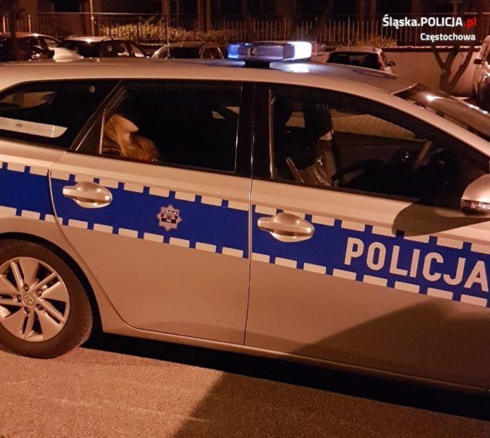 Świadek kradzieży powiadomił policję, złodzieja namierzył pies służący w częstochowskiej policji 3