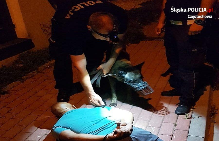 Świadek kradzieży powiadomił policję, złodzieja namierzył pies służący w częstochowskiej policji 1