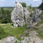 Skupisko skał wapiennych nieopodal Zamku Ogrodzieniec (fot. Robert Jodłowski)