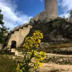 Zamek Pilcza w Smoleniu (mat. administratora zamku)