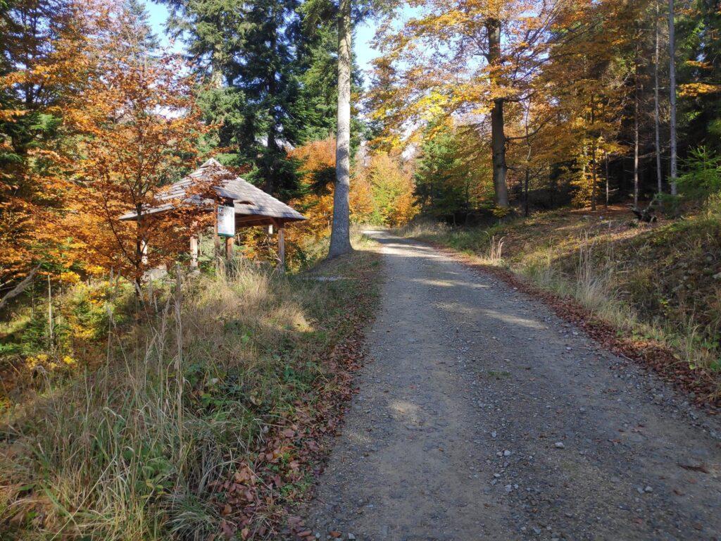 Jesienna Góra Żar , widokowa trasa dla amatorów spacerów 6