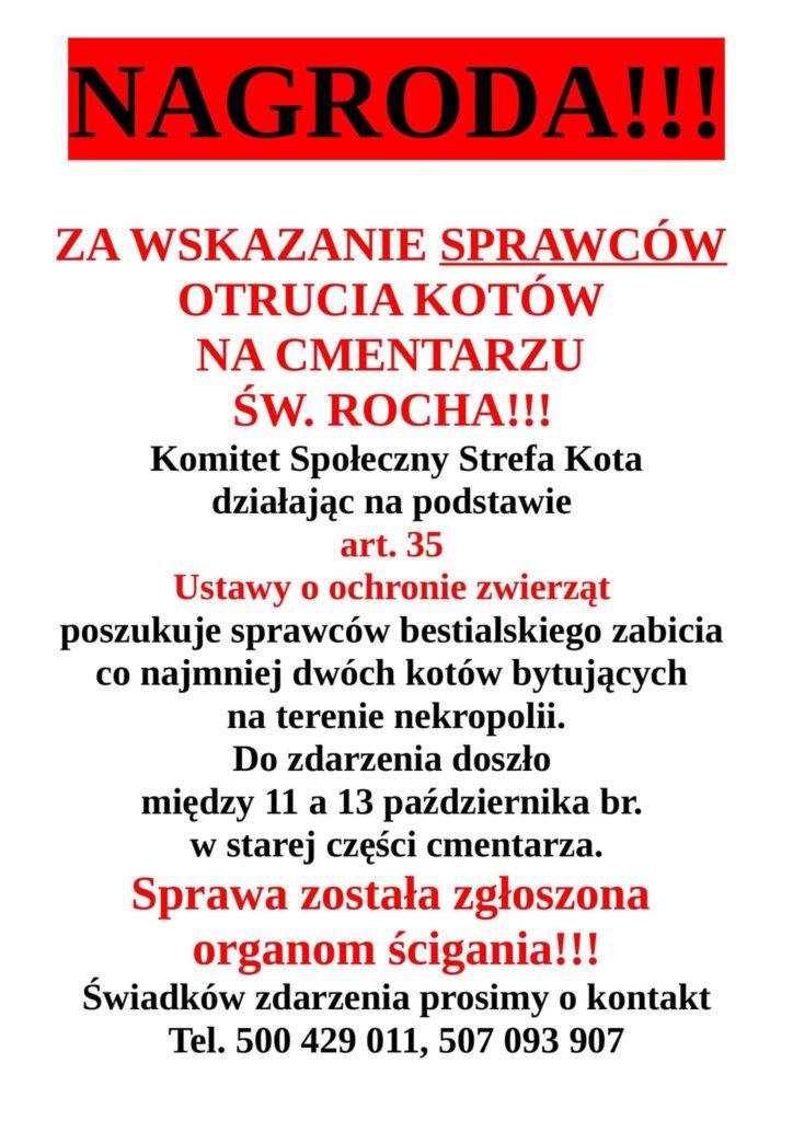 Członkowie częstochowskiej grupy społeczników zajmującej się bezdomnymi zwierzętami szukają osoby, która w bestialski sposób zabiła wolno żyjące koty 1