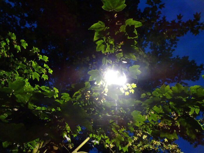 Nowe oświetlenie częstochowskich placów i skwerów 3