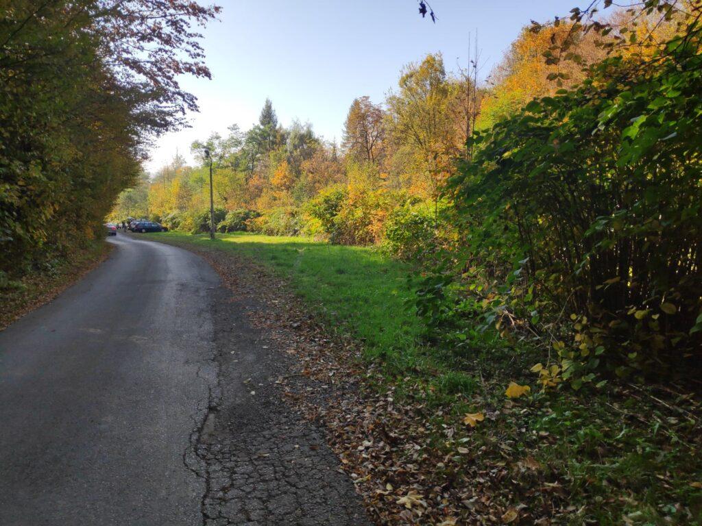 Jesienna Góra Żar , widokowa trasa dla amatorów spacerów 3