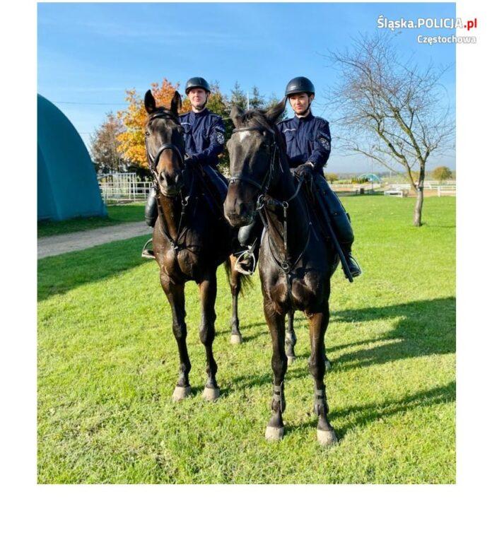 Częstochowska policja konna ma nowych funkcjonariuszy 2