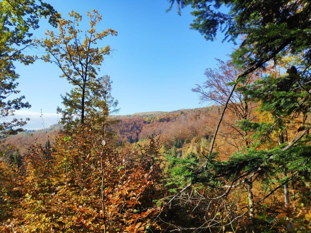 Jesienna Góra Żar , widokowa trasa dla amatorów spacerów 8