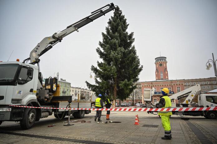 Na Placu Biegańskiego w Częstochowie stanęła już choinka. Bożonarodzeniowe drzewko, podobnie jak pozostałe dekoracje świąteczne zostanie podświetlona w weekend 2