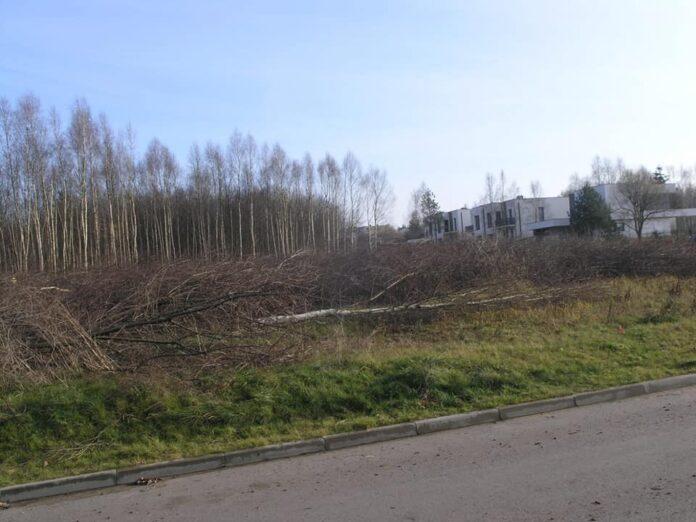 W częstochowskiej dzielnicy Grabówka wycięto kilkaset drzew i krzewów. Miasto sprawdza, czy spółka, która to zleciła ma wszystkie niezbędne pozwolenia 2
