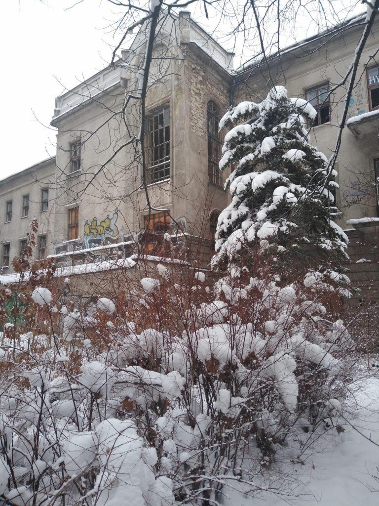 Niszczeje piękny niegdyś budynek, w którym uczyli się częstochowscy studenci 4
