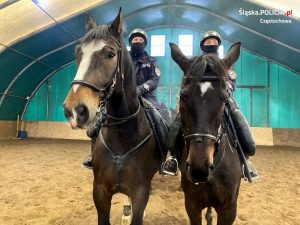 Chcesz być policjantem i kochasz konie? Zgłoś się. Częstochowska jednostka czeka na chętnych 1