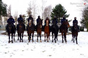 Chcesz być policjantem i kochasz konie? Zgłoś się. Częstochowska jednostka czeka na chętnych 2