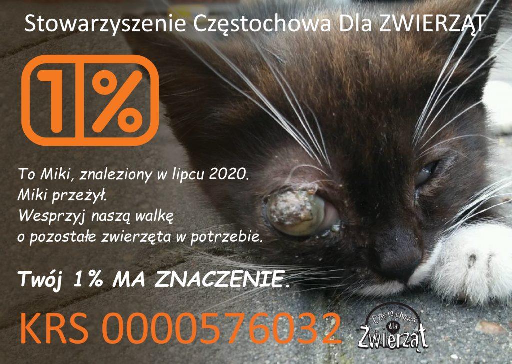 Pomóż pomagać, Stowarzyszenie Częstochowa dla Zwierząt apeluje o wsparcie 1