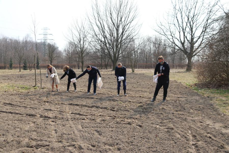 W Częstochowie sieją antysmogowe łąki 3