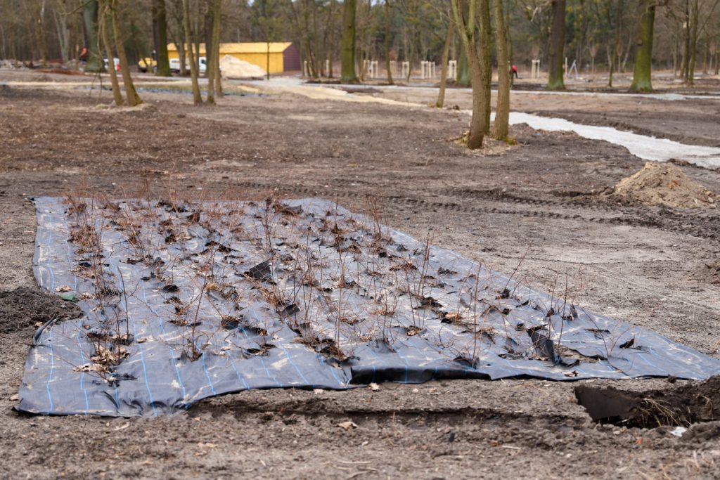 W Lublińcu powstaje kolejny park przy rzece 3