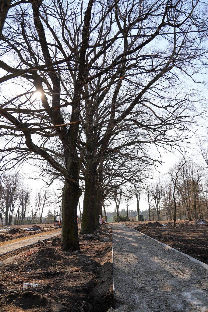 W Lublińcu powstaje kolejny park przy rzece 6