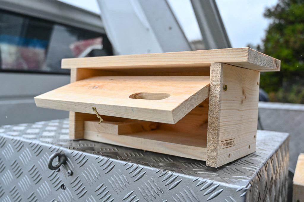 Częstochowa walczy z komarami budując domki dla jerzyków 1