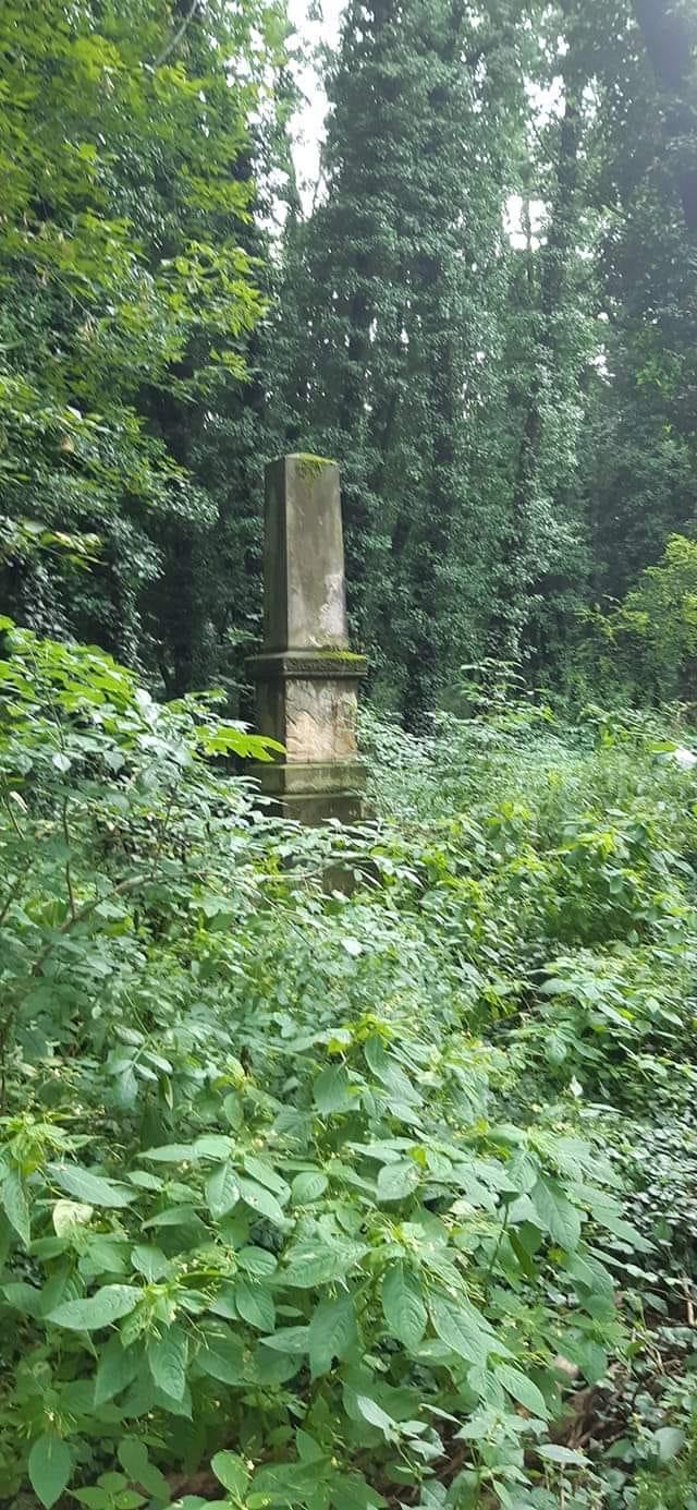 Uporządkują Cmentarz Żydowski w Częstochowie. To jeden z elementów obchodów ogłoszonego przez Radę Miasta roku 2021 Rokiem Pamięci o Ofiarach Częstochowskiego Getta 2