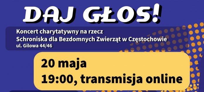 """""""Daj Głos!"""". Koncert charytatywny na rzecz czworonogów ze schroniska w Częstochowie 2"""
