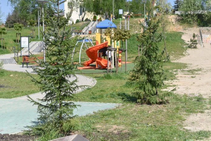 Kolejna sponsorowana zieleń w Częstochowie 5