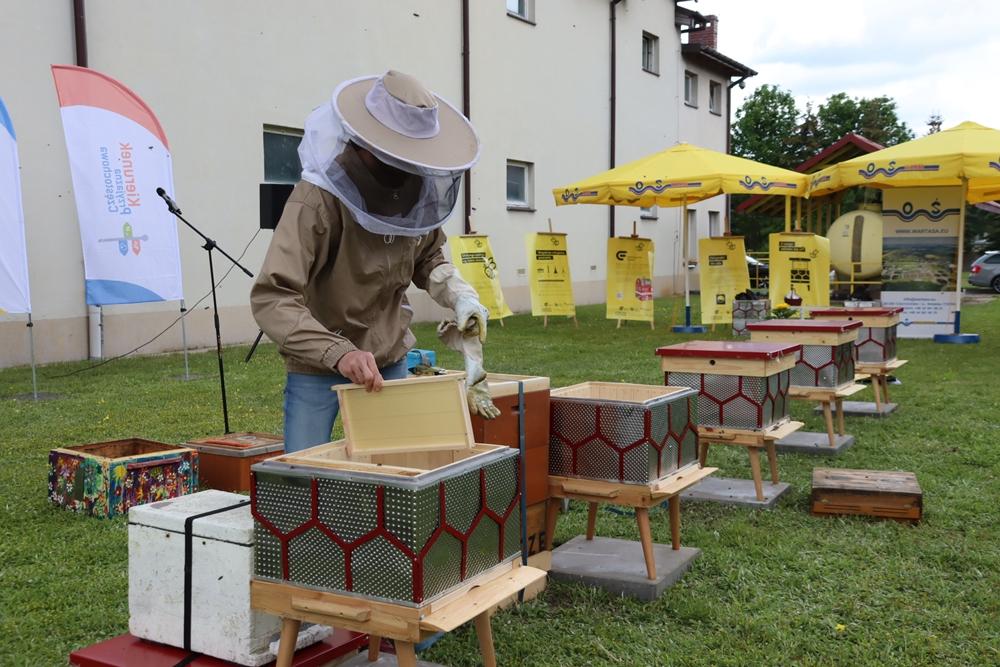 W częstochowskiej dzielnicy Dźbów powstała miejska pasieka. Pszczoły już pracują, wkrótce więc można spodziewać się miodu 4