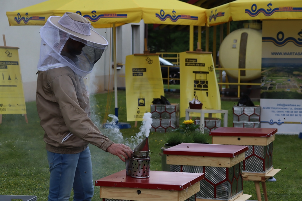 W częstochowskiej dzielnicy Dźbów powstała miejska pasieka. Pszczoły już pracują, wkrótce więc można spodziewać się miodu 5