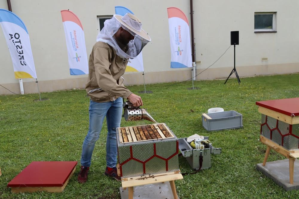 W częstochowskiej dzielnicy Dźbów powstała miejska pasieka. Pszczoły już pracują, wkrótce więc można spodziewać się miodu 7