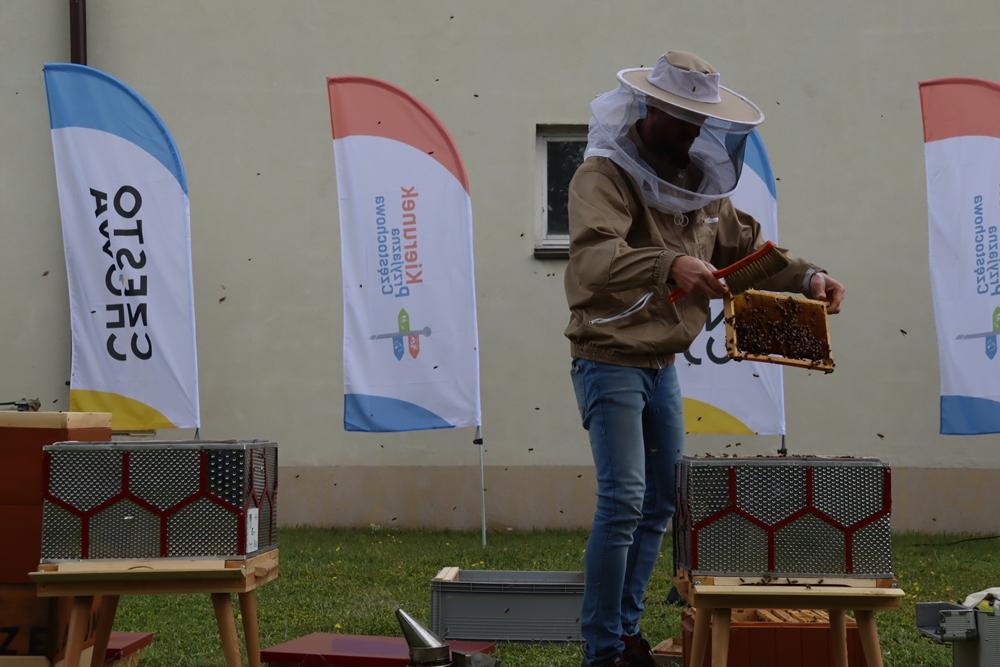 W częstochowskiej dzielnicy Dźbów powstała miejska pasieka. Pszczoły już pracują, wkrótce więc można spodziewać się miodu 9
