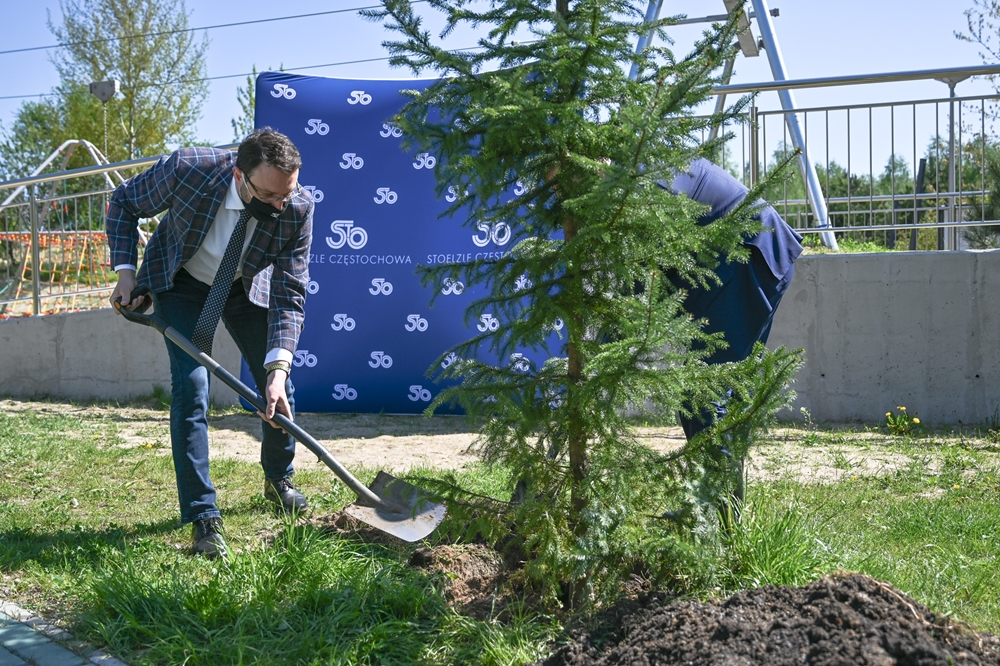Kolejna sponsorowana zieleń w Częstochowie 2