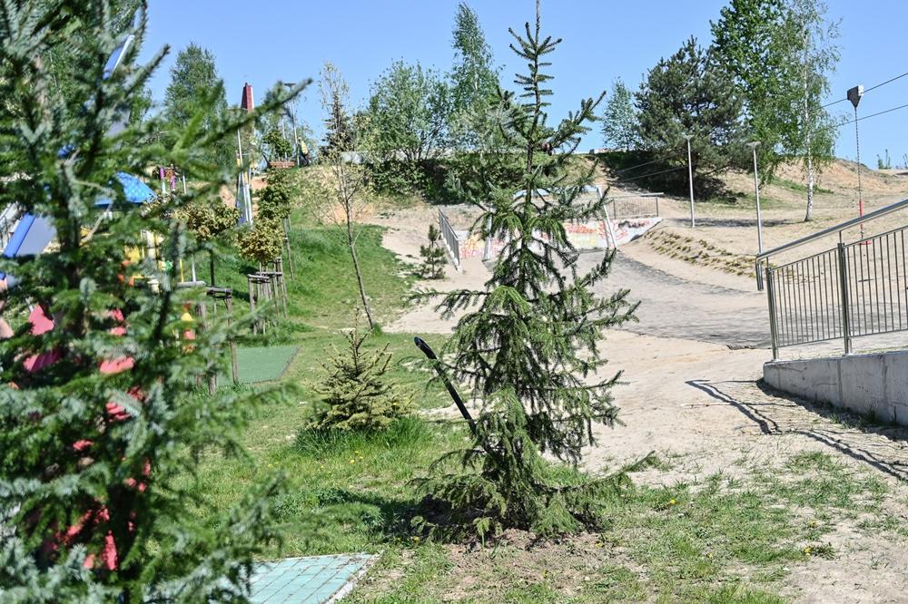 Kolejna sponsorowana zieleń w Częstochowie 3
