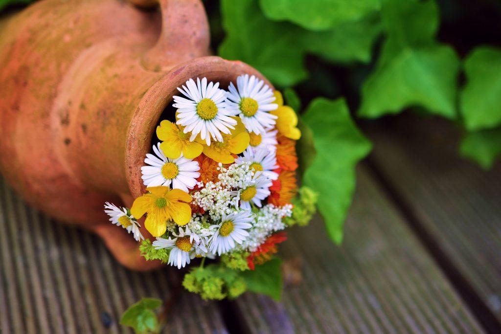 Zaczarowany ogród, czyli kilka sposobów na stworzenie oryginalnego nastroju 1