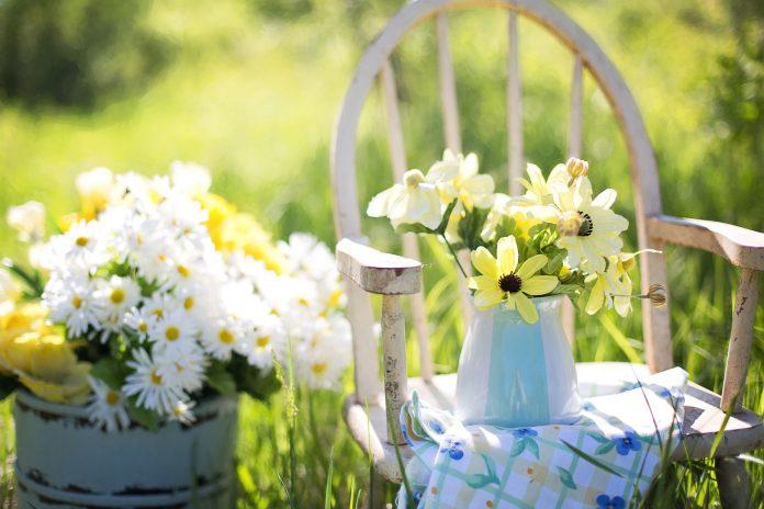 Zaczarowany ogród, czyli kilka sposobów na stworzenie oryginalnego nastroju 6