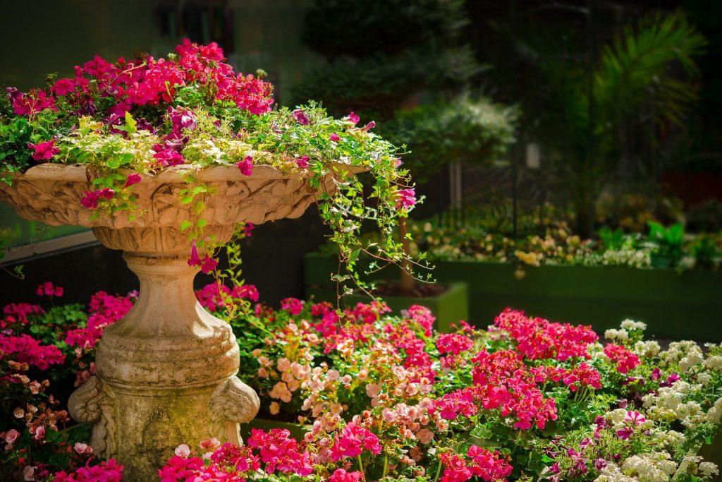 Zaczarowany ogród, czyli kilka sposobów na stworzenie oryginalnego nastroju 4