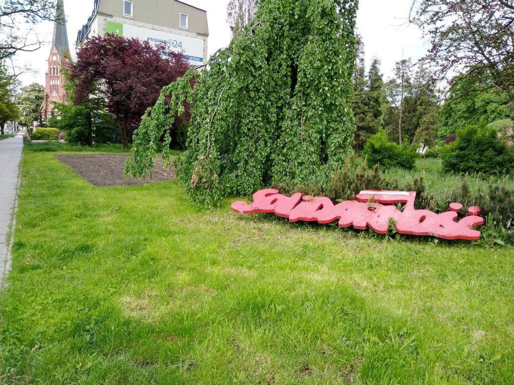 Częstochowski Skwer Solidarności wygląda jak porzucony, zaniedbany ogród, który nie ma właściciela 6