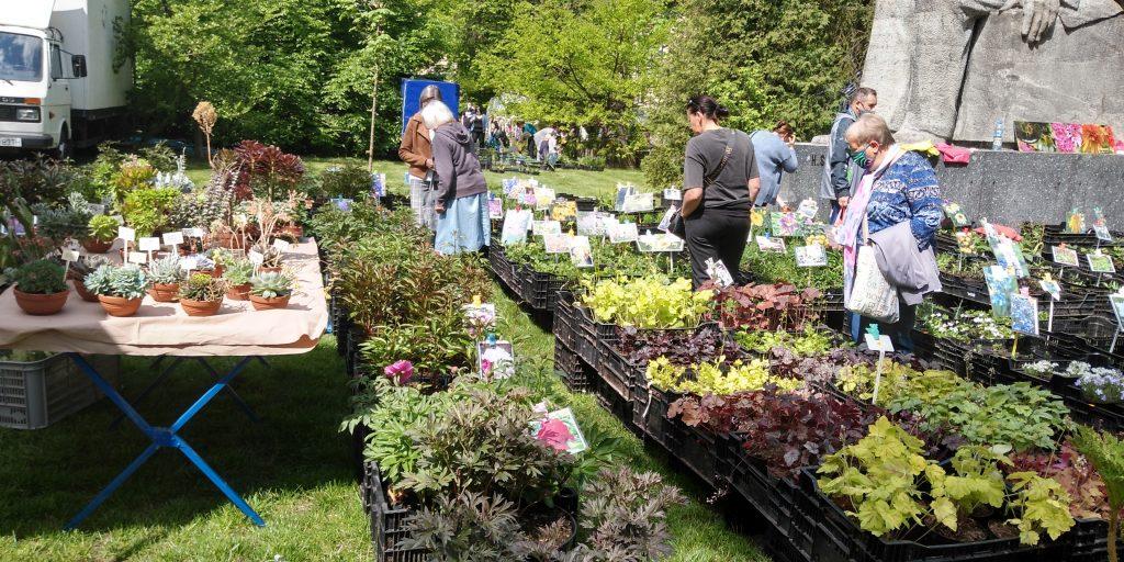Dzisiaj drugi dzień Targów Ogrodniczych 7