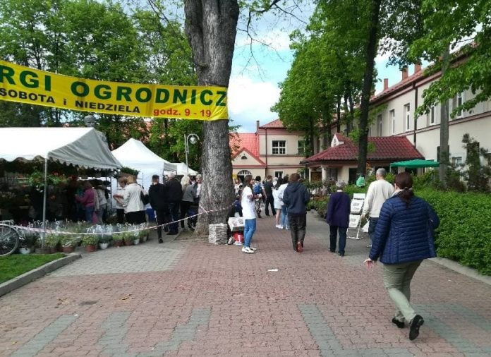 W Częstochowie odbędą się Targi Ogrodnicze. Ofertę przedstawi kilkudziesięciu sprzedawców 3
