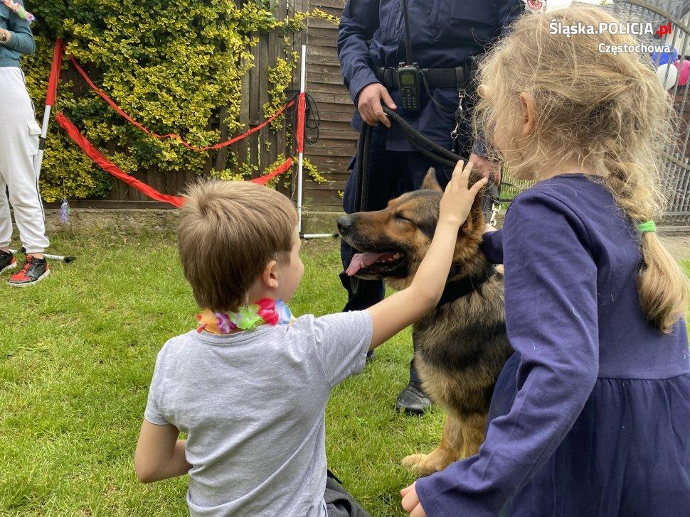Dzień Dziecka z czworonożnymi funkcjonariuszami częstochowskiej policji 3