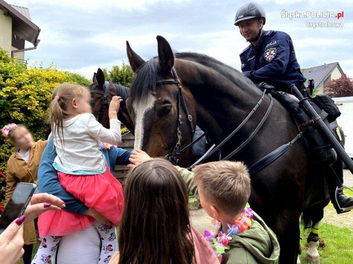 Dzień Dziecka z czworonożnymi funkcjonariuszami częstochowskiej policji 14