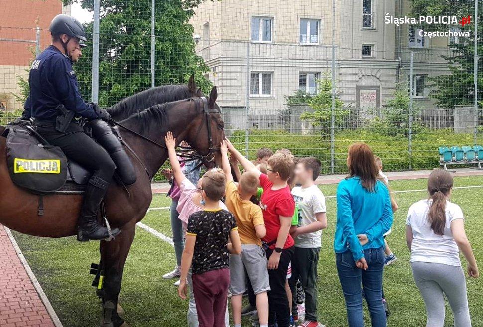 Dzień Dziecka z czworonożnymi funkcjonariuszami częstochowskiej policji 12