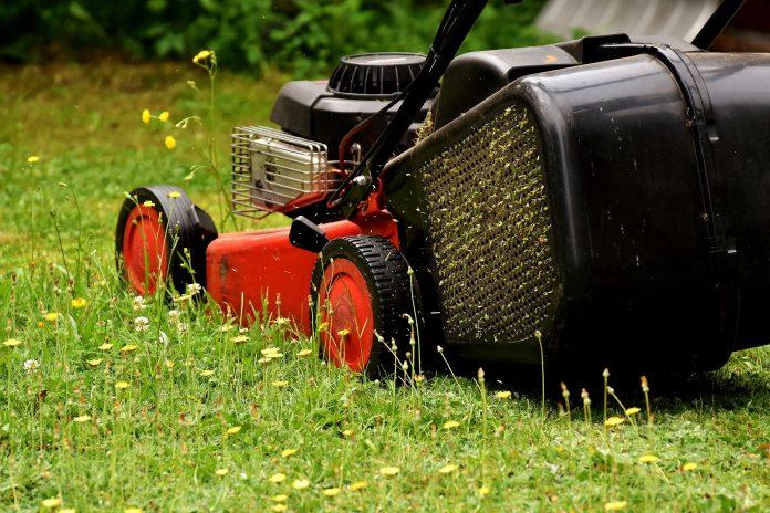 W Częstochowie przy drogach koszą trawę 2